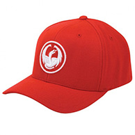 Dragon Icon Curve Flex Fit Cap